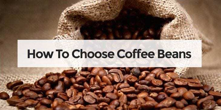 how to choose coffee beans?