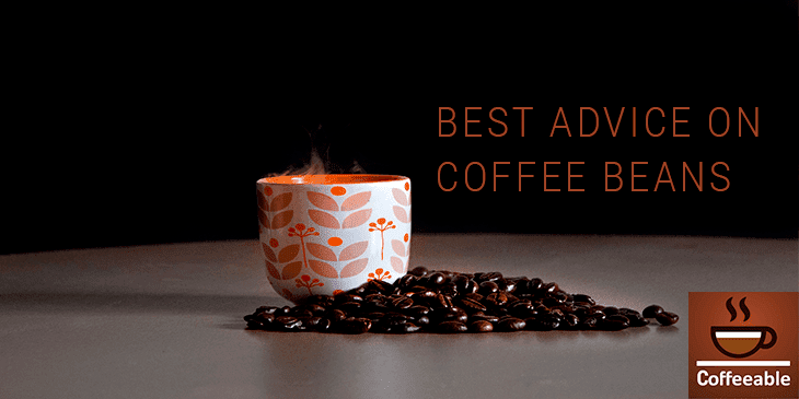 Best Advice on Coffee Beans banner image